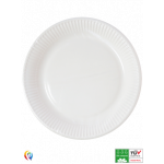 Compostable Paper Plates