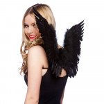Feather Wings Black
